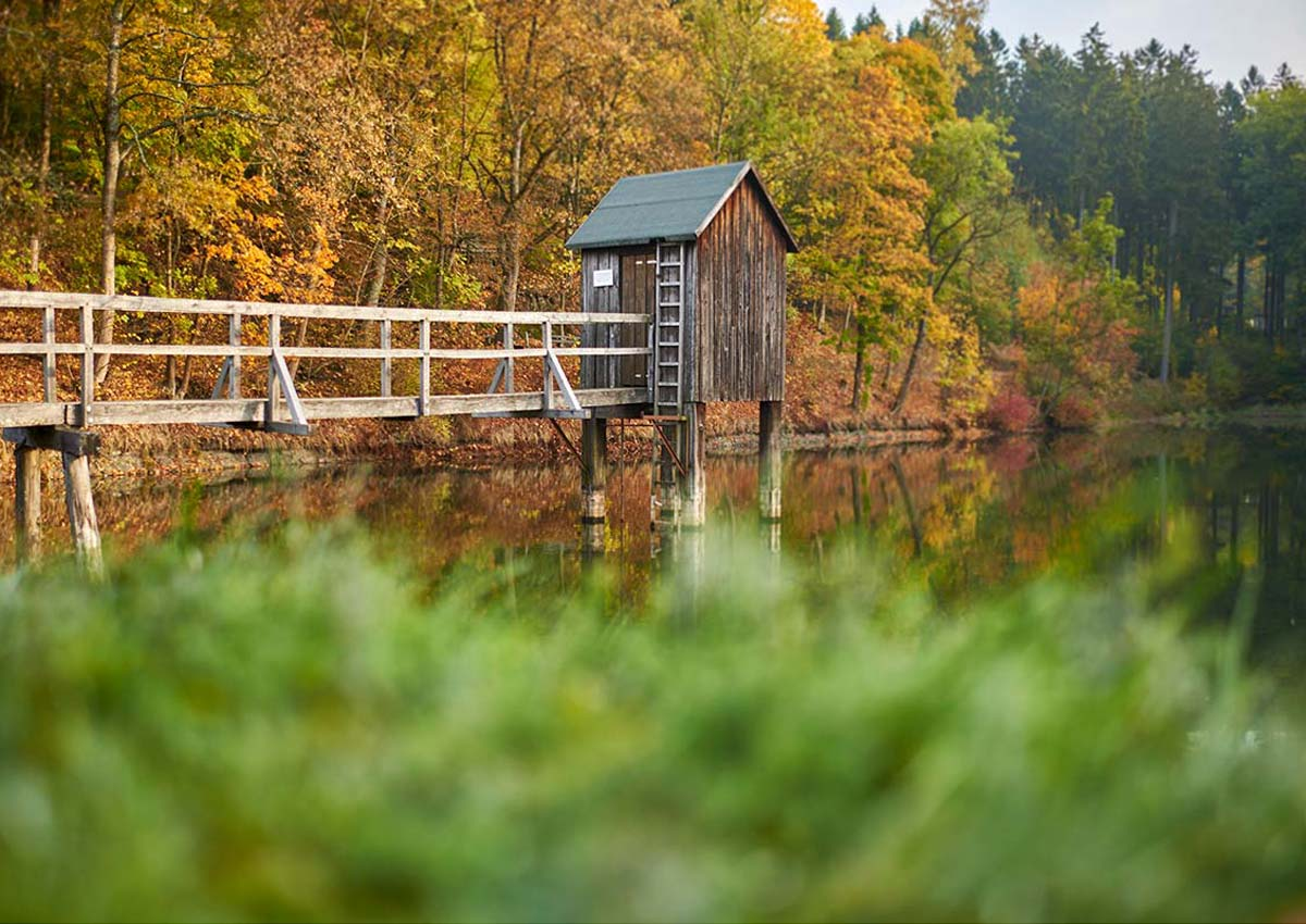 Autumn in the Upper Harz Water Management System